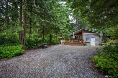 Sumas Single Family Home For Sale: 2064 Exit Rd