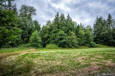 Ferndale Residential Lots & Land Pending Feasibility: 7365 Snowberry Lane
