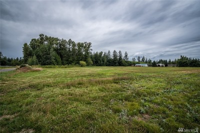 Ferndale Residential Lots & Land Pending Feasibility: 164x Harksell Rd