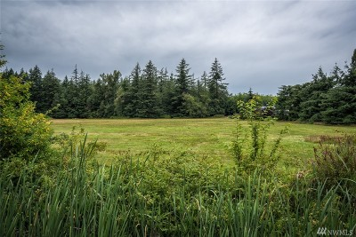 Ferndale Residential Lots & Land Pending Feasibility: 162x Harksell Rd