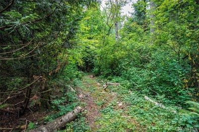 Ferndale Residential Lots & Land Pending Feasibility: 7390 Snowberry Lane