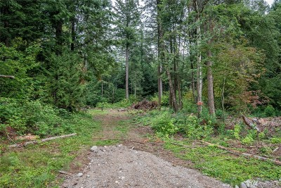 Ferndale Residential Lots & Land Pending Feasibility: 7368 Snowberry Lane