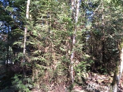 Sammamish Residential Lots & Land For Sale: 2852 244th Ave NE