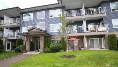 Bellingham Condo/Townhouse For Sale: 500 Darby Dr #312