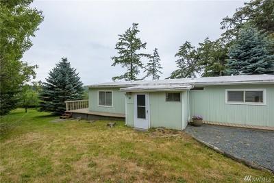 Oak Harbor Single Family Home For Sale: 1019 Diane Ave