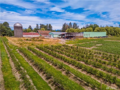 Everson Farm For Sale: 3247 South Pass Rd