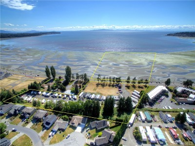 Blaine Commercial For Sale: 7954 Birch Bay Dr