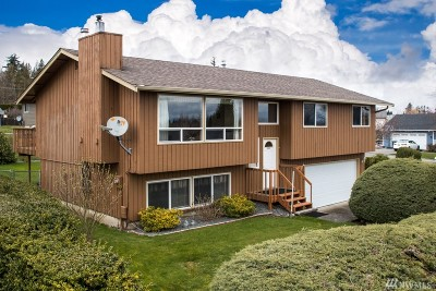 Ferndale Single Family Home For Sale: 6087 Summit View Place