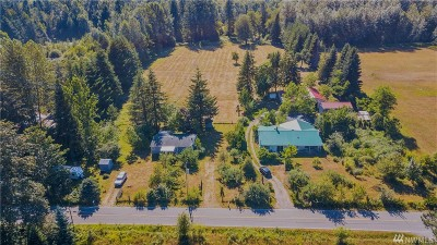 Whatcom County Single Family Home For Sale: 3993 Nelson Rd