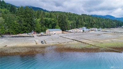 Lilliwaup Residential Lots & Land For Sale: 40650 N U.s. Hwy 101