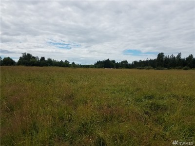 Blaine Residential Lots & Land For Sale: 8561 Blaine Rd
