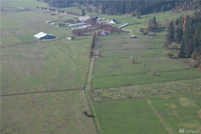 Tenino Farm For Sale: 16641 Old Highway 99 SE