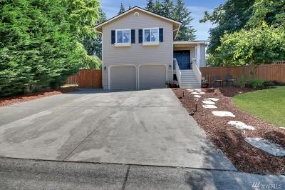 Lake Tapps Single Family Home For Sale: 3711 163rd Av Ct E