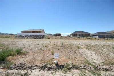 Chelan, Chelan Falls, Entiat, Manson, Brewster, Bridgeport, Orondo Residential Lots & Land For Sale: 421 Sunny Brooke Lane