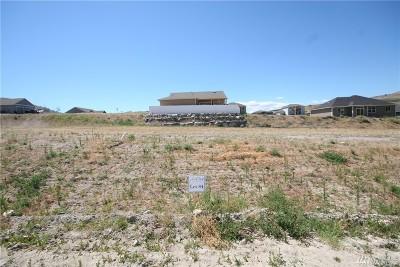 Chelan, Chelan Falls, Entiat, Manson, Brewster, Bridgeport, Orondo Residential Lots & Land For Sale: 409 Sunny Brooke Lane