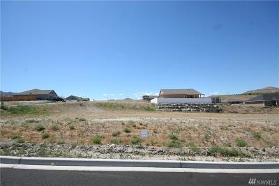 Chelan, Chelan Falls, Entiat, Manson, Brewster, Bridgeport, Orondo Residential Lots & Land For Sale: 401 Sunny Brook Lane