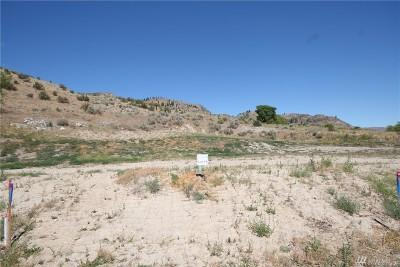Chelan, Chelan Falls, Entiat, Manson, Brewster, Bridgeport, Orondo Residential Lots & Land For Sale: 1155 Sunny Brooke Lane