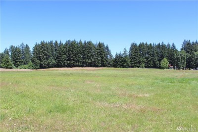 Rochester WA Residential Lots & Land For Sale: $150,000