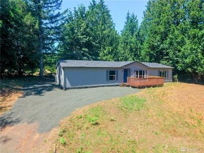 Mason County Single Family Home For Sale: 20 E Brier Lane