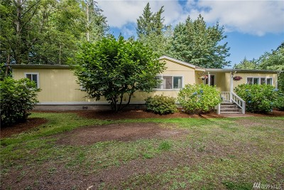 Whatcom County Single Family Home For Sale: 1824 E Pole Rd