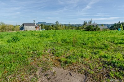 Residential Lots & Land For Sale: 212 Adeline Wy