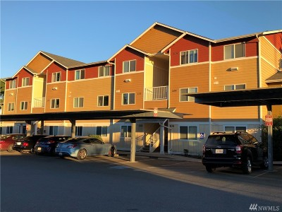 Oak Harbor Condo/Townhouse For Sale: 1700 SW Mulberry Place #A-103