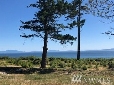 Point Roberts WA Residential Lots & Land For Sale: $695,000