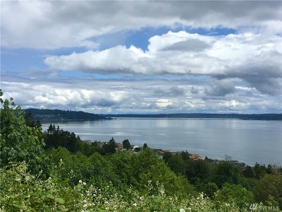 Port Ludlow Residential Lots & Land For Sale: 1333 Thorndyke Rd