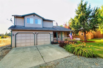 Lake Stevens Single Family Home For Sale: 3010 139th Ave NE