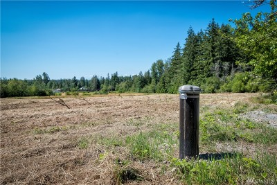 Bellingham Residential Lots & Land For Sale: 2860 Mt. Baker Hwy