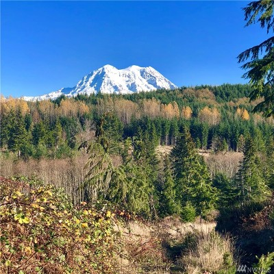 Eatonville Residential Lots & Land For Sale: 456th St S #Lot 2
