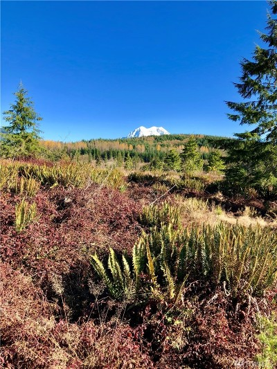 Eatonville Residential Lots & Land For Sale: 456th St E #Lot 3