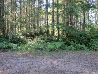 Residential Lots & Land For Sale: N Kokanee Park Ct