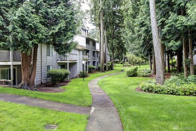 Federal Way Condo/Townhouse For Sale: 33011 18th Place S #F205