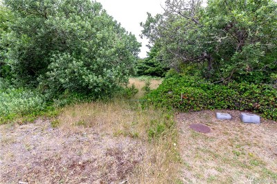 Residential Lots & Land For Sale: 124 NW Helm St