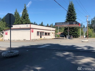 Grapeview Commercial For Sale: 4371 E Grapeview Loop Rd