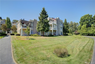 Bothell Condo/Townhouse For Sale: 17432 Bothell Wy NE #B109