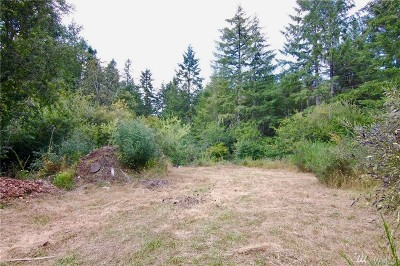 Residential Lots & Land For Sale: 120 W Frosty Lane
