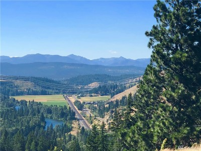 Residential Lots & Land For Sale: 691 Morrison Canyon Lane