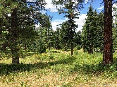 Residential Lots & Land For Sale: 270 Anderson Lane