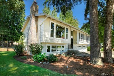 Redmond Single Family Home For Sale: 16506 NE 110th St