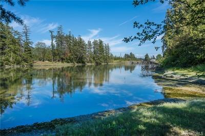 Blaine Single Family Home For Sale: 4548 California Trail