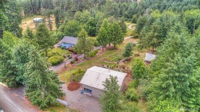 Tenino Single Family Home For Sale: 16521 Melville Rd SE