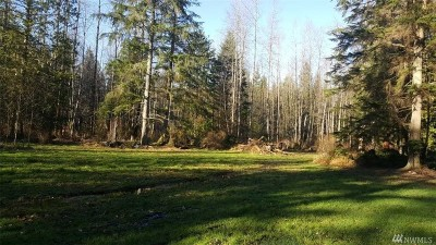 Snohomish County Residential Lots & Land For Sale: 10926 100th St NE