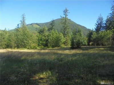 Residential Lots & Land For Sale: 473 Cougar Run Rd