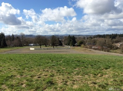 Residential Lots & Land For Sale: 127 Kennicott Rd