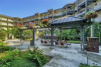 Stanwood Condo/Townhouse For Sale: 7104 265th St NW #417