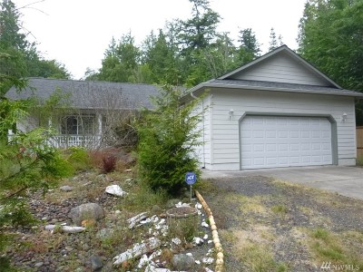 Port Ludlow Single Family Home For Sale: 191 Goliah Lane