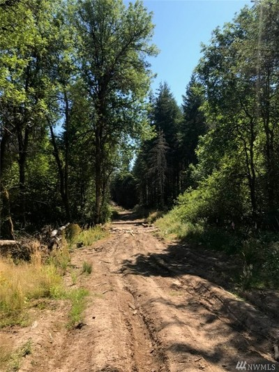 Residential Lots & Land For Sale: 187 Roppert Rd