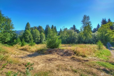 Maple Valley Residential Lots & Land For Sale: SE 196th Street